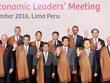国家主席陈大光出席APEC领导人第一阶段会议
