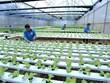 《种植业法》生效有助于实现农产品生产与加工对接