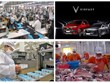 2019年是越南经济的成功一年