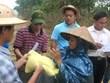 政府总理决定向中部四省额外发放6500吨大米