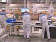 越南不断提高劳动力质量   吸引外商的眼球