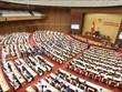 德国学者对越南新政府寄予厚望