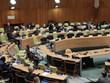 越南主持召开联合国安理会阿里亚模式会议