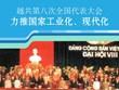 图表新闻:越共第八次全国代表大会:力推国家工业化、现代化