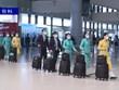 越南交通运输部发布国内航班恢复计划的临时规定