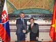 胡志明市与斯洛伐克加大贸易投资合作力度