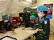越南野战医院为参与南苏丹维和任务做好了充足的准备