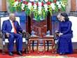 越南国家代主席邓氏玉盛会见原莫桑比克总统