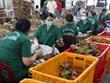 越南前江省今年第一季度货物出口额同比增长14.5%