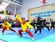 """多国武术选手参加第二届""""国际越南武术精髓""""联欢节"""
