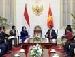 越南国家副主席邓氏玉盛会见印尼总统佐科·维多多