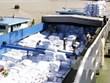 安江省大米和水果出口美国市场前景广阔