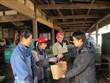 日本茨城县希望接纳更多越南实习生