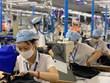 安江省积极协助受新冠肺炎疫情影响的企业