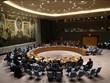 联合国安理会就委内瑞拉局势召开视频会议  越南支持进行对话寻找长期和平解决方案