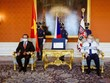 捷克总统高度评价捷越在多个领域的合作与传统友好关系