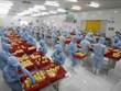 RCEP协定:越南农产品向全球价值链攀升的良机