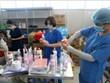 7月23日越南新增确诊病例7307例 创单日新增最高纪录