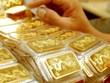 9月23日上午越南国内黄金价格上涨20万越盾