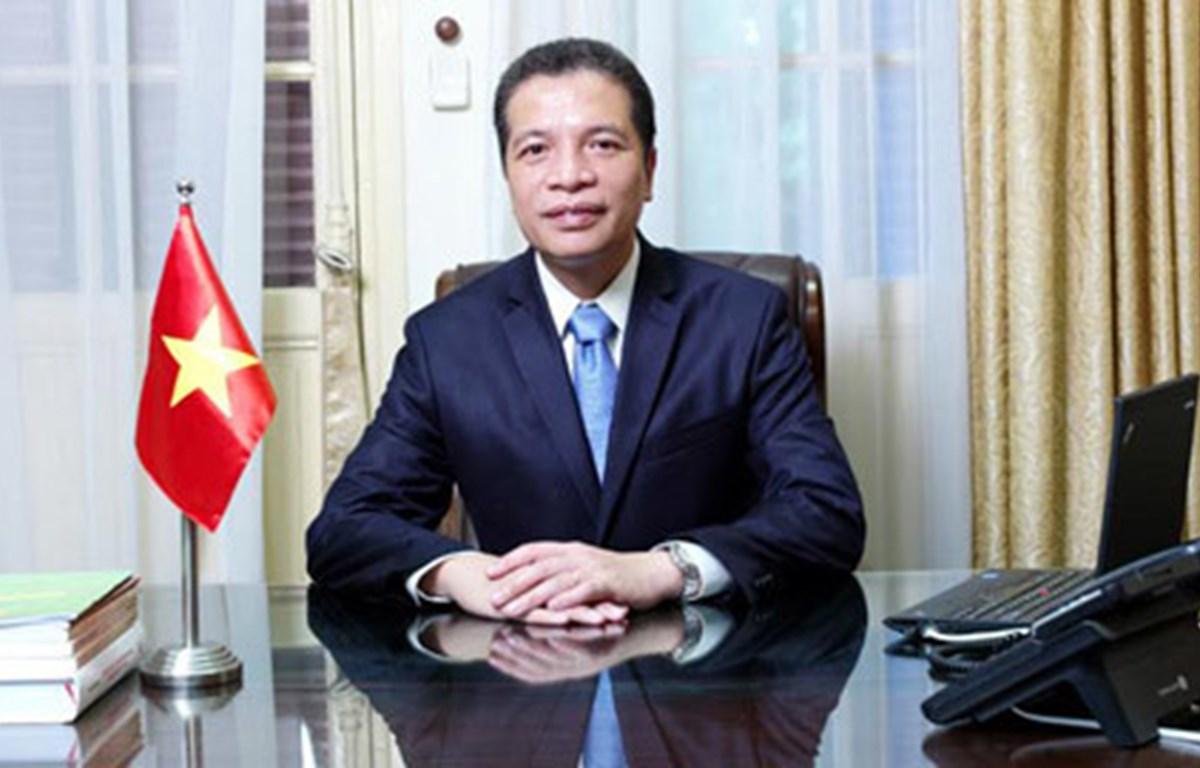 海外越南人事务国家委员会主任邓明魁。图自越通社