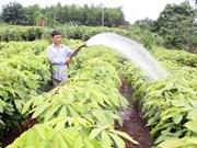越南林业产业总产值增长率创历史新高