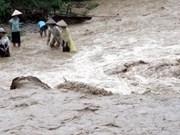 越南北部山区各省遭暴雨洪水袭击致3人死亡4人受伤