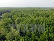 德国与澳大利亚协助越南加强森林与沿海地区生态系统保护工作