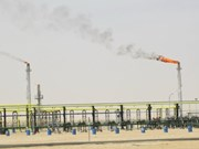 越南国家油气集团在阿尔及利亚正式开采出首批原油