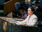 越南驻联合国大使阮芳娥:东盟与联合国携手应对安全挑战