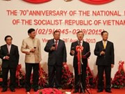越南驻各国大使馆纷纷举行仪式庆祝九•二国庆70周年