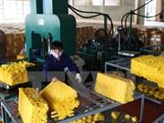 越南与国际三方橡胶理事会加强合作