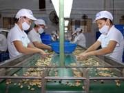 越南与印度促进农业合作
