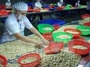 越南腰果占全球出口额的一半