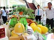 2015年越南农业节吸引250个单位参加
