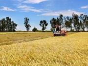 智能农业发展需适应气候变化