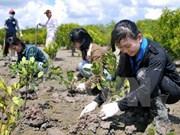欧盟鼓励越南提高环保目标