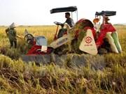 为越南北部山丘及平原地区成功研究新作物品种