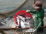 农业与农村发展部部长高德发:不让对美出口查鱼活动被间断