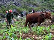 多维贫困侧测量:越南减贫新测量法
