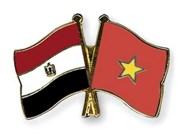 越南新任驻埃及大使向埃总统递交国书