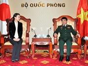 日本维和力量将向越南提供多领域、多层次的长期协助