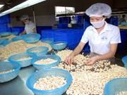 越南农林水产品贸易顺差额达70亿美元