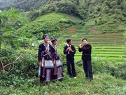 越南极少数民族电视节目将在2016年新年之际开播