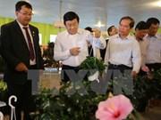 张晋创主席考察林同省高科技农业生产模式