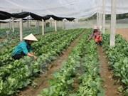 越南南定省与日本宫崎县加强农业合作