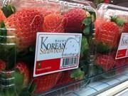 韩国新鲜草莓获准对越南出口