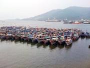 岘港市出资33亿越盾来保护与发展水产资源