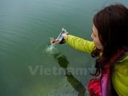 今日农历腊月二十三 越南人家家户户送灶神上天
