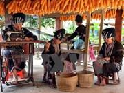 老街省力争将该省建成越南最具规模的山区自然景观与文化旅游中心