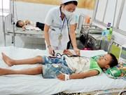 春节后越南西原地区登革热病感染病例增加